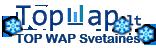 Towap.lt WAP Skaitliukų registracija